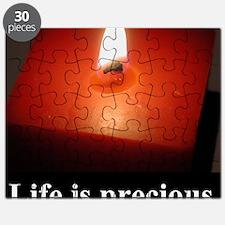 2-lifeprecious01 Puzzle