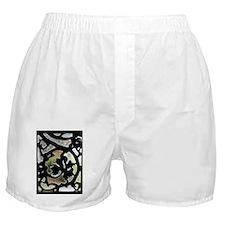 DSC_0117 Boxer Shorts