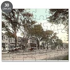 Main Street Puzzle