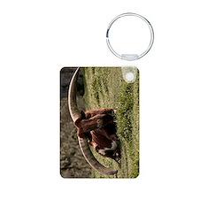 (9) Watusi Cow Keychains