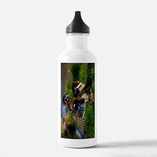 (9) Wood Duck Wing Water Bottle