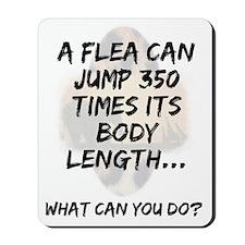 Flea Mousepad