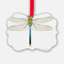 dragonfly_cp3 Ornament