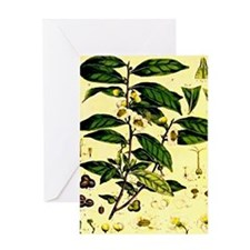 2-img006 Greeting Card