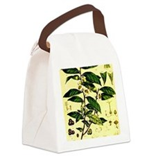 2-img006 Canvas Lunch Bag