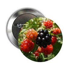"Berries 2.25"" Button"