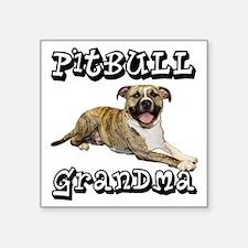 """PitBullGrandma_Tigger Square Sticker 3"""" x 3"""""""