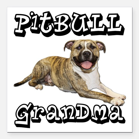 "PitBullGrandma_Tigger Square Car Magnet 3"" x 3"""