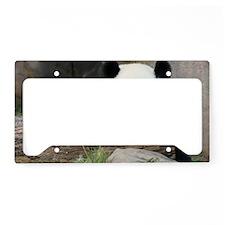 IMG_9018 License Plate Holder