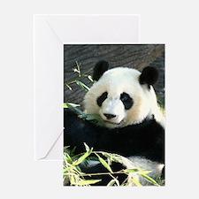 panda2 - Copy Greeting Card