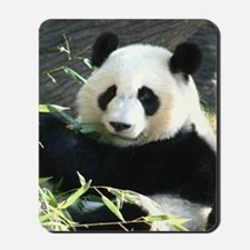panda2 - Copy Mousepad