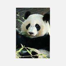 panda2 - Copy Rectangle Magnet