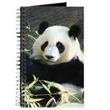 Panda Journals & Spiral Notebooks