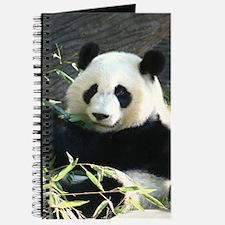 panda2 - Copy Journal