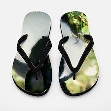Simon Flip Flops