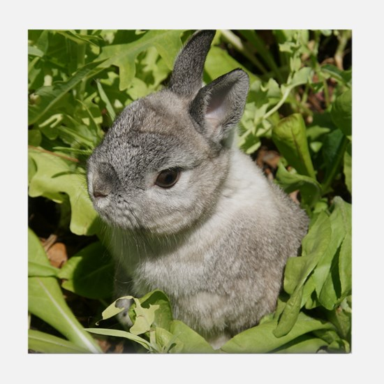 Rabbit in lettuce 1 Tile Coaster