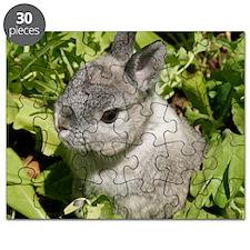 Rabbit in lettuce 1 Puzzle