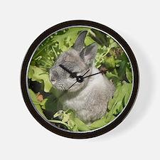 Rabbit in lettuce 1 Wall Clock