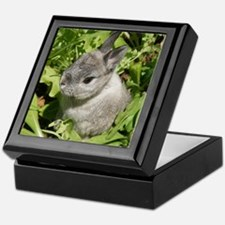 Rabbit in lettuce 1 Keepsake Box