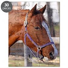 cisco magnet 1 Puzzle