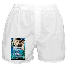 Dolphin Dreams Boxer Shorts