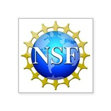 "nsflogo Square Sticker 3"" x 3"""