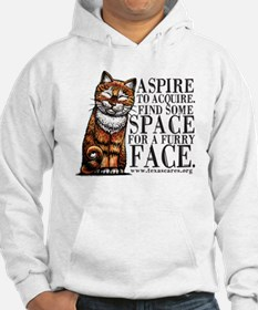 aspire_to_acquire_CLRLogo Hoodie
