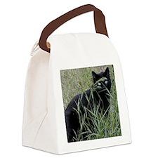 2-slinky Canvas Lunch Bag