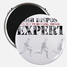 bombdisposal Magnet