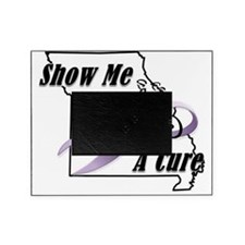 Show Me A Cure Logo Picture Frame