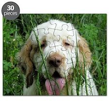 Picture2 129 Puzzle