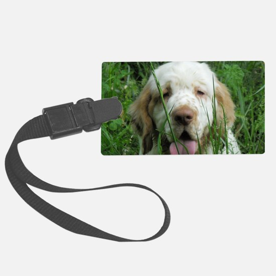 Picture2 129 Luggage Tag