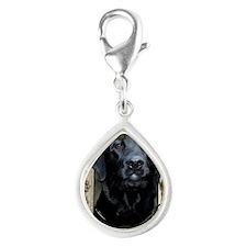 French_Quarters_Black_Labra Silver Teardrop Charm