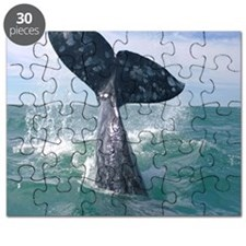 GrayWhale-MP Puzzle
