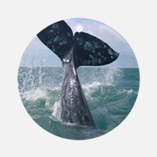 GrayWhale-MP Round Ornament