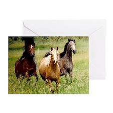 3-horses Greeting Card