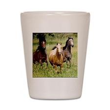 3-horses Shot Glass