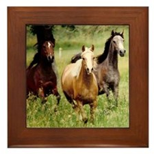 3-horses Framed Tile
