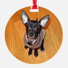 Cute Chico Ornament