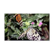 butterflies1-greet4440 Rectangle Car Magnet