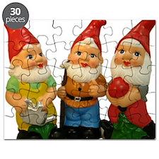 Gnome-_25 Puzzle