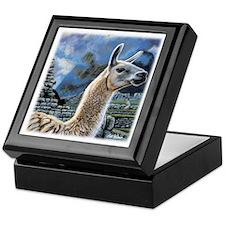 Andean Llama Keepsake Box
