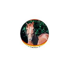 horsecafepress4 Mini Button