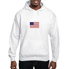 American-Tea-Party-(flag)-dark-s Hoodie
