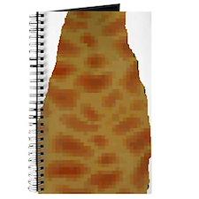 2-fire cape Journal