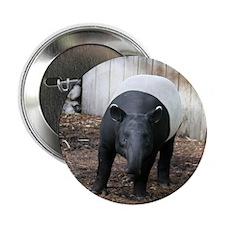 "tapir-Cstr 2.25"" Button"