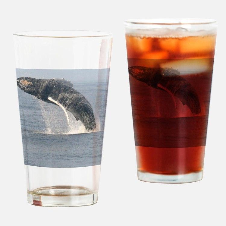 humpbackbreach-cstr Drinking Glass