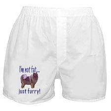 keeshond furry Boxer Shorts