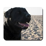 Black lab Mouse Pads