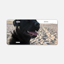 black_lab Aluminum License Plate
